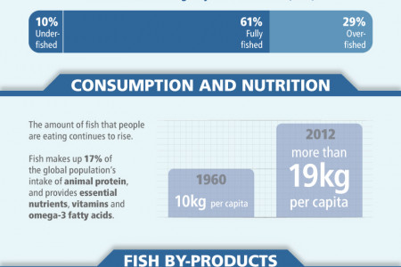 The State of World Fisheries and Aquaculture 2014 Infographic