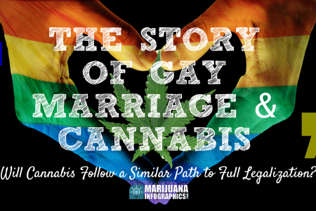 The Story of Gay Marriage & Cannabis  Infographic