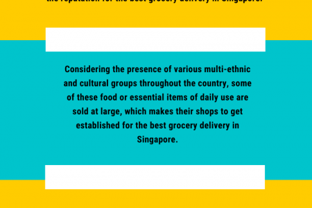 THE SUPERMARKETS AND THEIR DELIVERY SERVICES IN SINGAPORE?  Infographic
