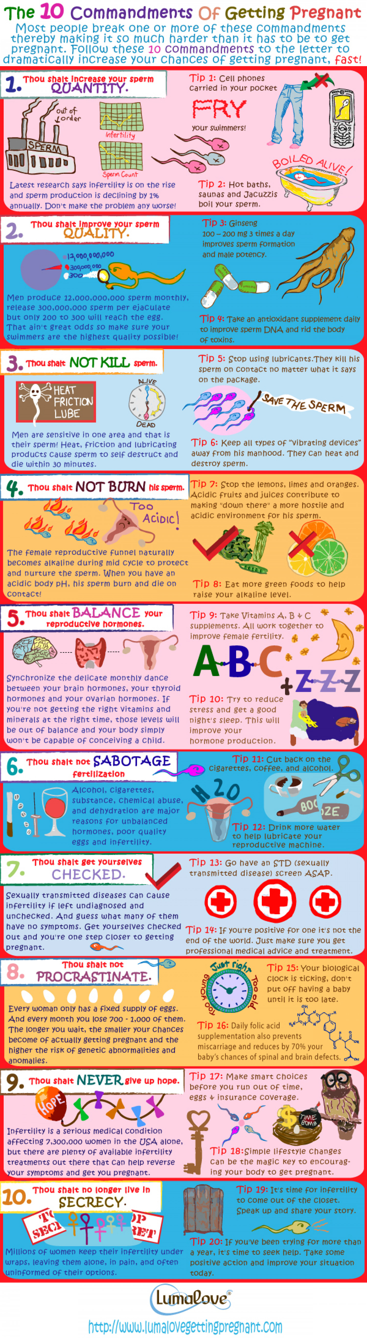The Ten Commandments of Getting Pregnant Infographic