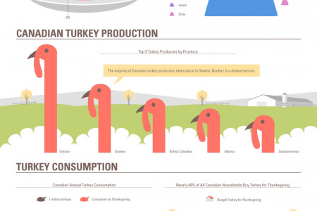 The Terrific Thanksgiving Turkey Infographic