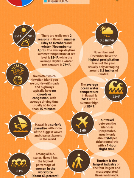 The Top 10 Reasons to Move to Hawaii  Infographic