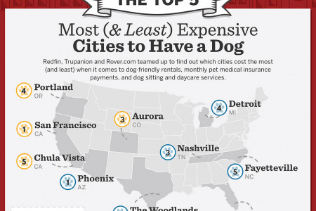 The Top 5 Most (and Least) Expensive Cities to Have a Dog Infographic