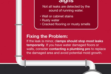 The Top 5 Plumbing Emergencies Infographic