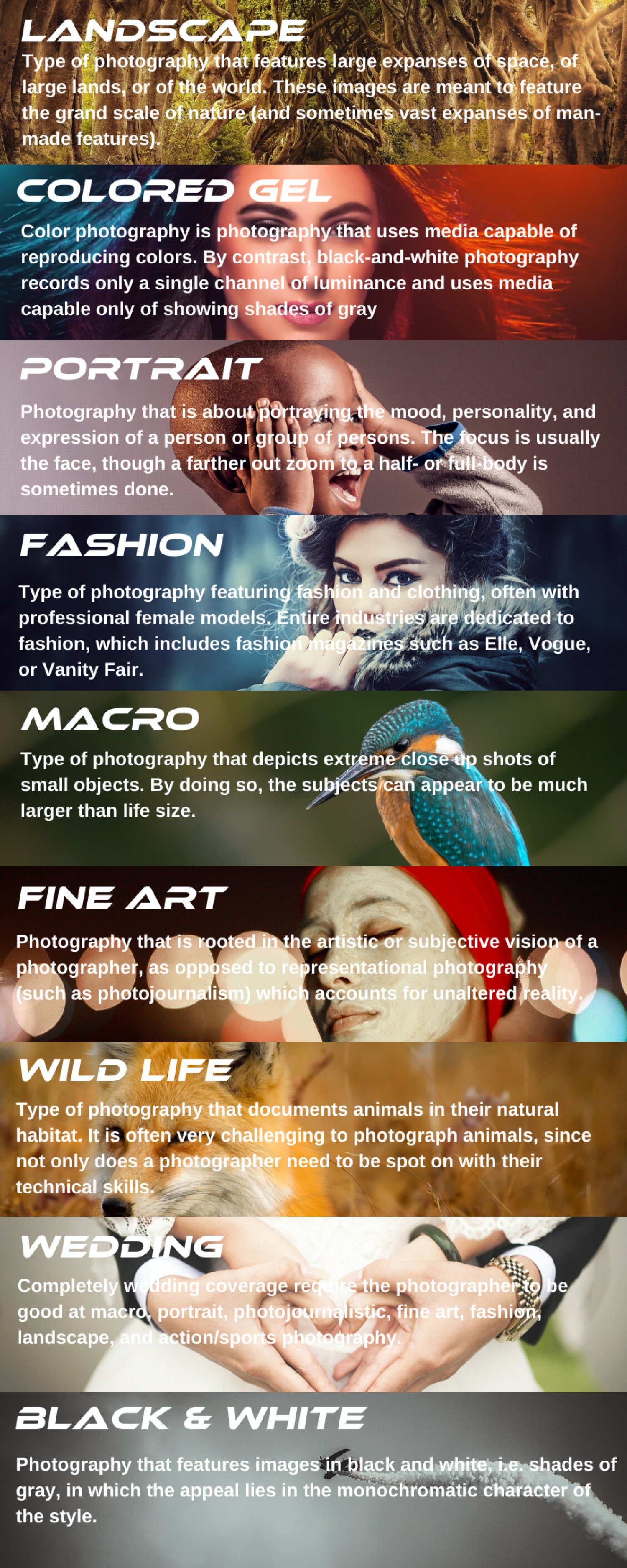 The Top 9 Photography Types For Beginners Infographic