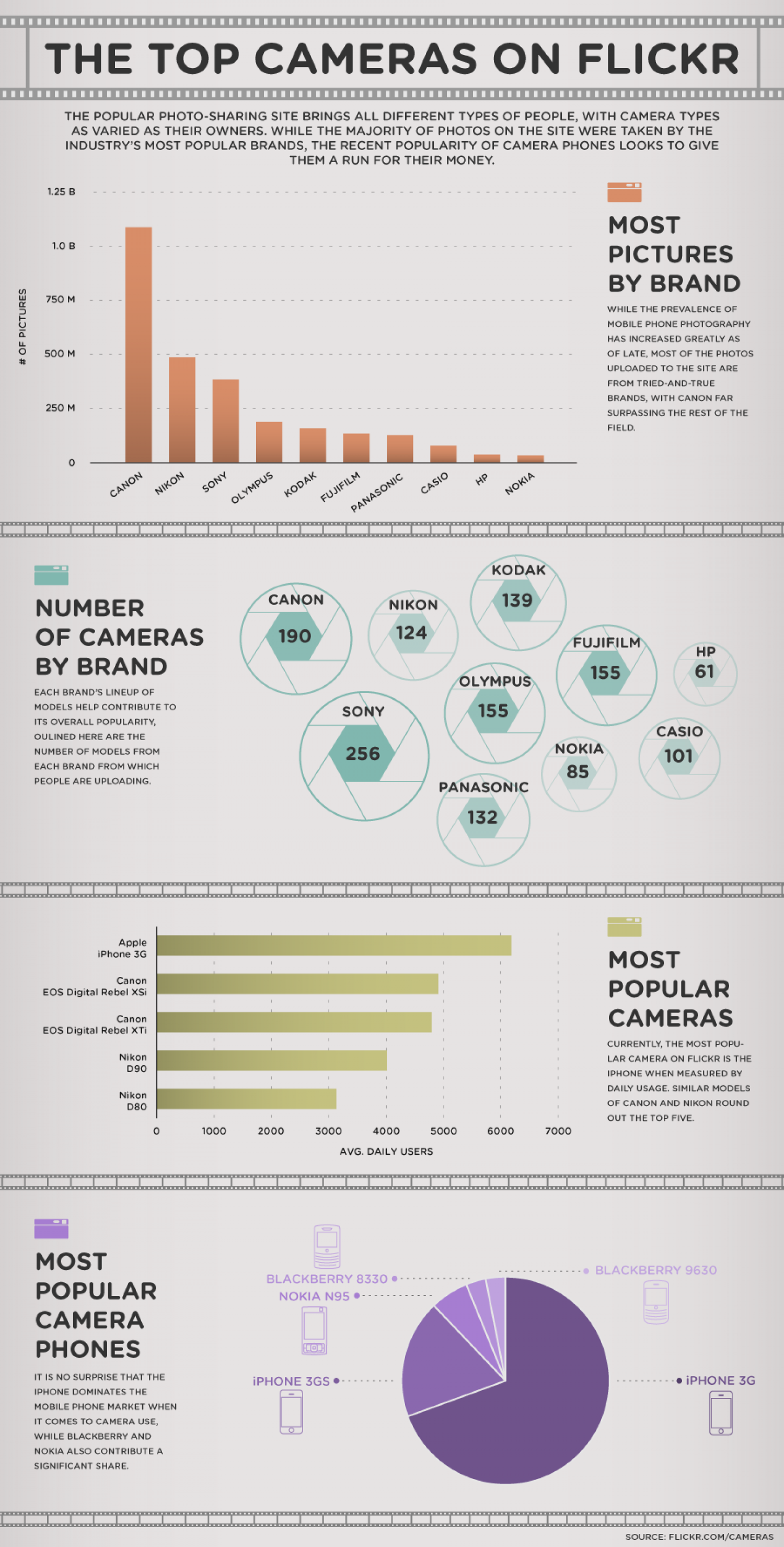 The Top Cameras on Flickr  Infographic