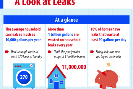 The True Cost of Household Leaks Infographic