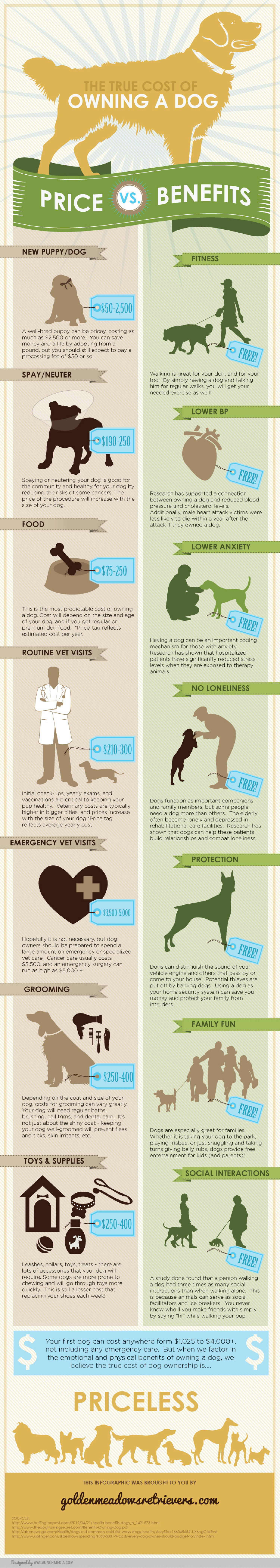The True Cost of Owning A Dog Infographic