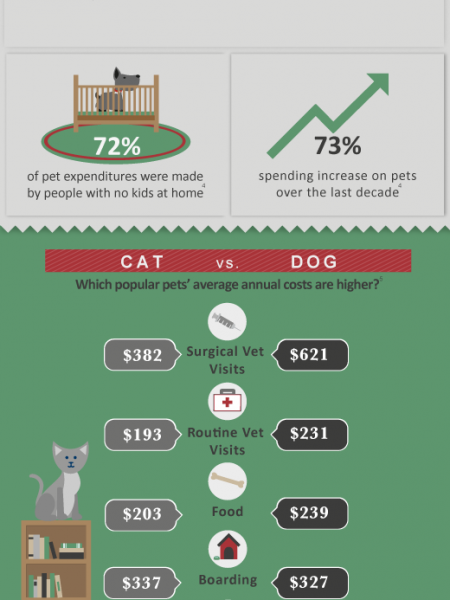 The Cost of Owning a Pet Infographic