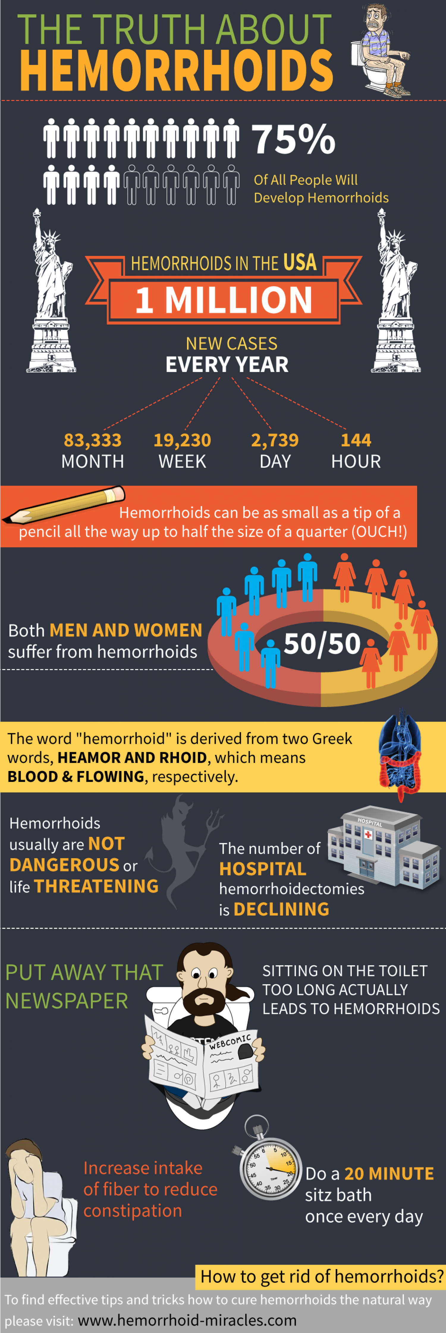 The Truth About Hemorrhoids Infographic