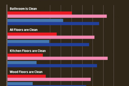 The Truth About Home Cleaning Habits Infographic
