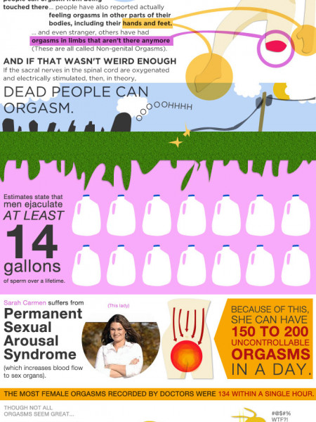 The Truth About Orgasms  Infographic