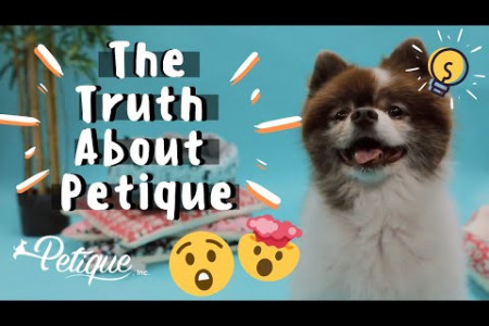 The Truth About Petique Pets Infographic