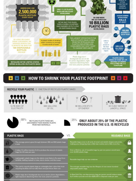 The Truth About Plastic Infographic