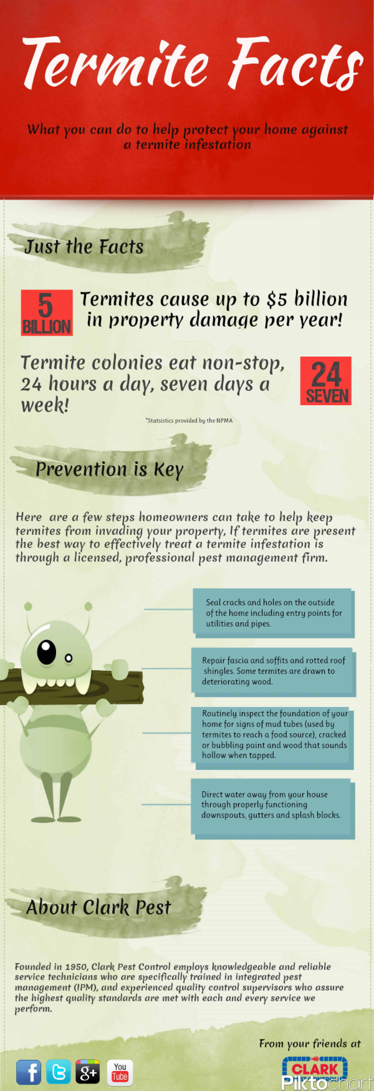 The Truth About Termites Infographic