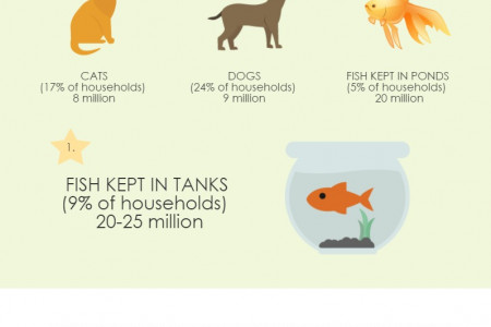 The UK Pet Population Infographic