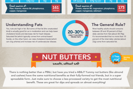 The Ultimate Guide to Nuts Infographic