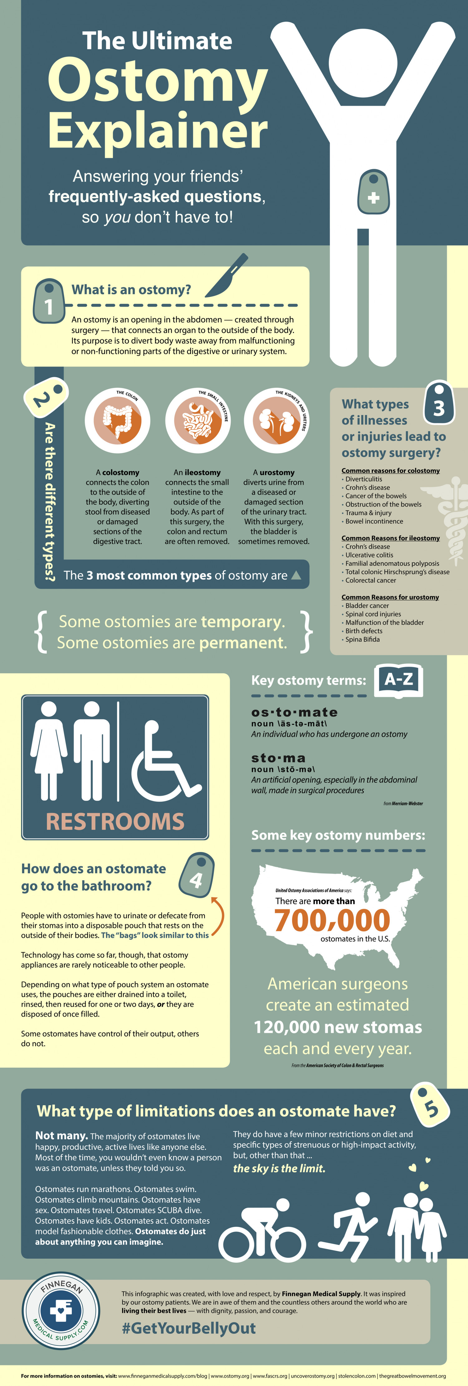 The Ultimate Ostomy Explainer Infographic