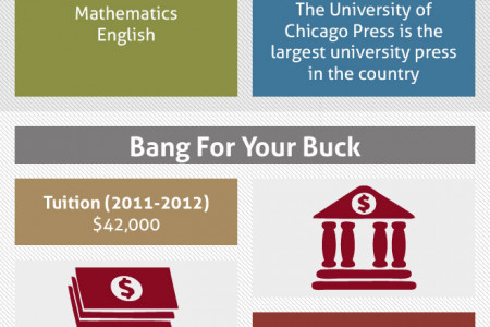 The University of Chicago Infographic Infographic