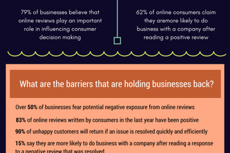 The Value of Online Reviews Infographic