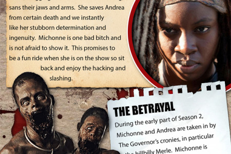 The Walking Dead- The Evolution of Michonne Infographic