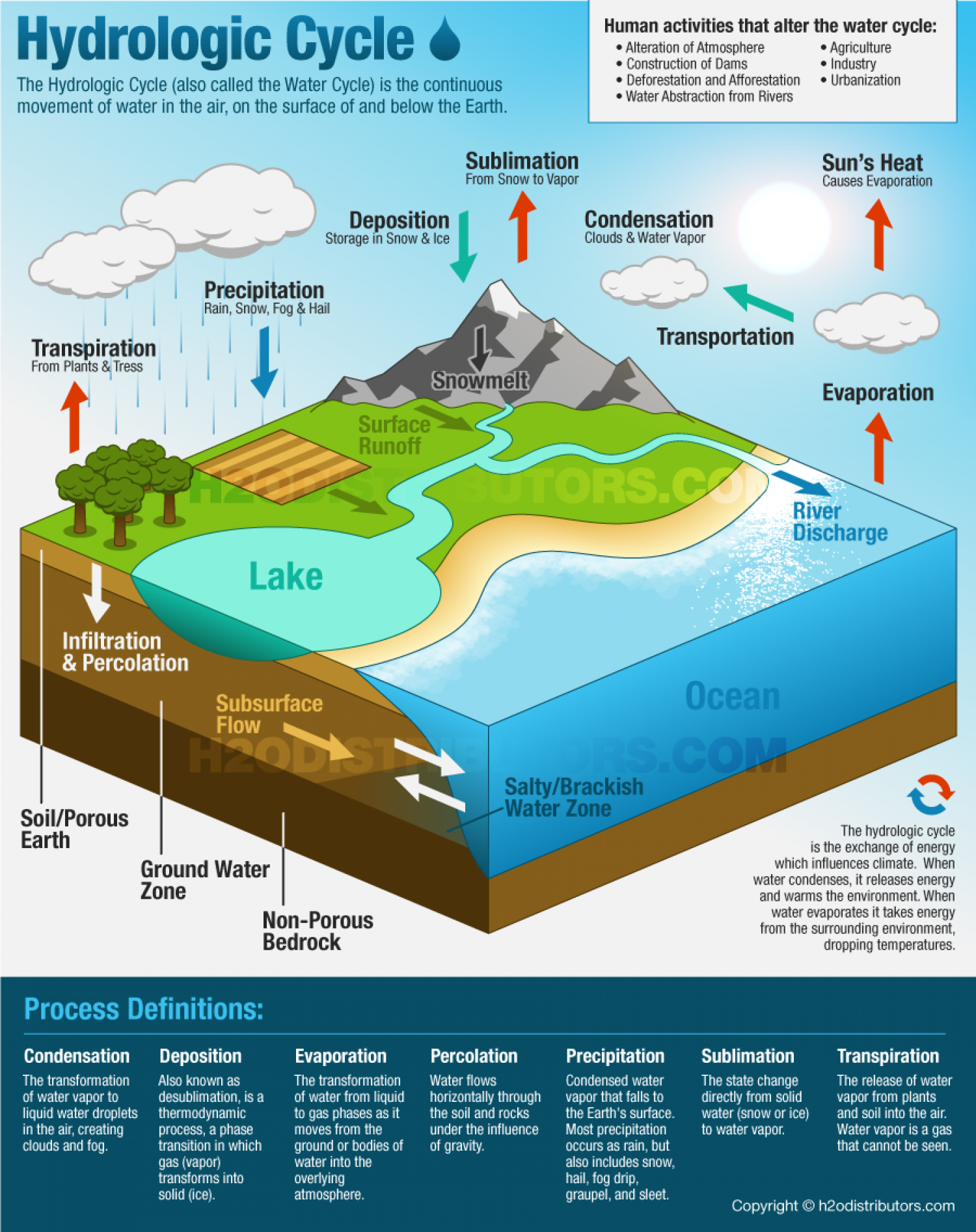 The Water Cycle Infographic