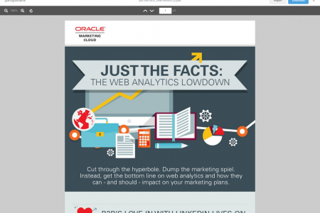 The Web Analytics Lowdown Infographic