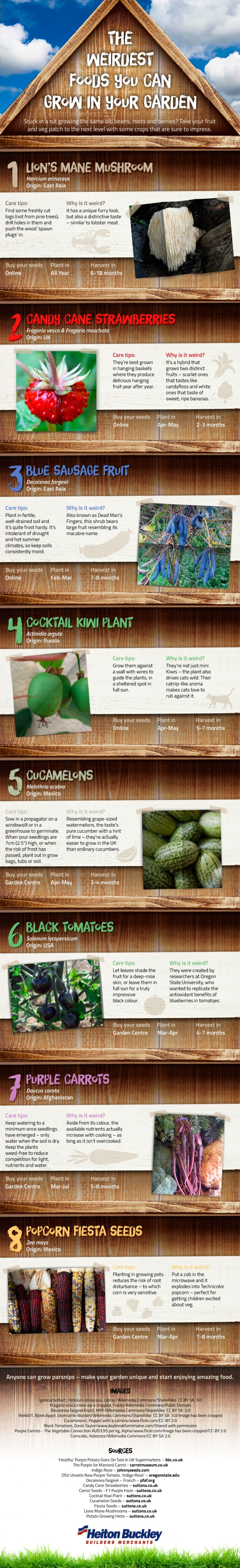 The Weirdest Foods You Can Grow in Your Garden Infographic