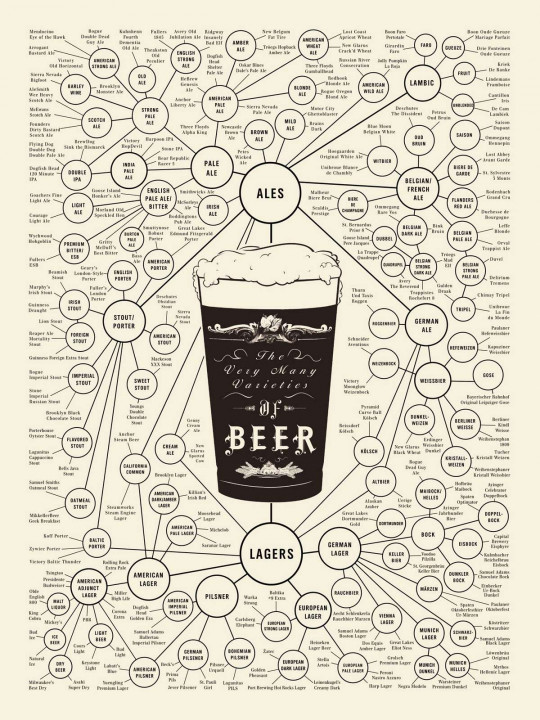 The World of Beer