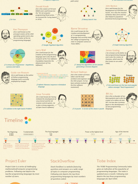 The World of Programming  Infographic