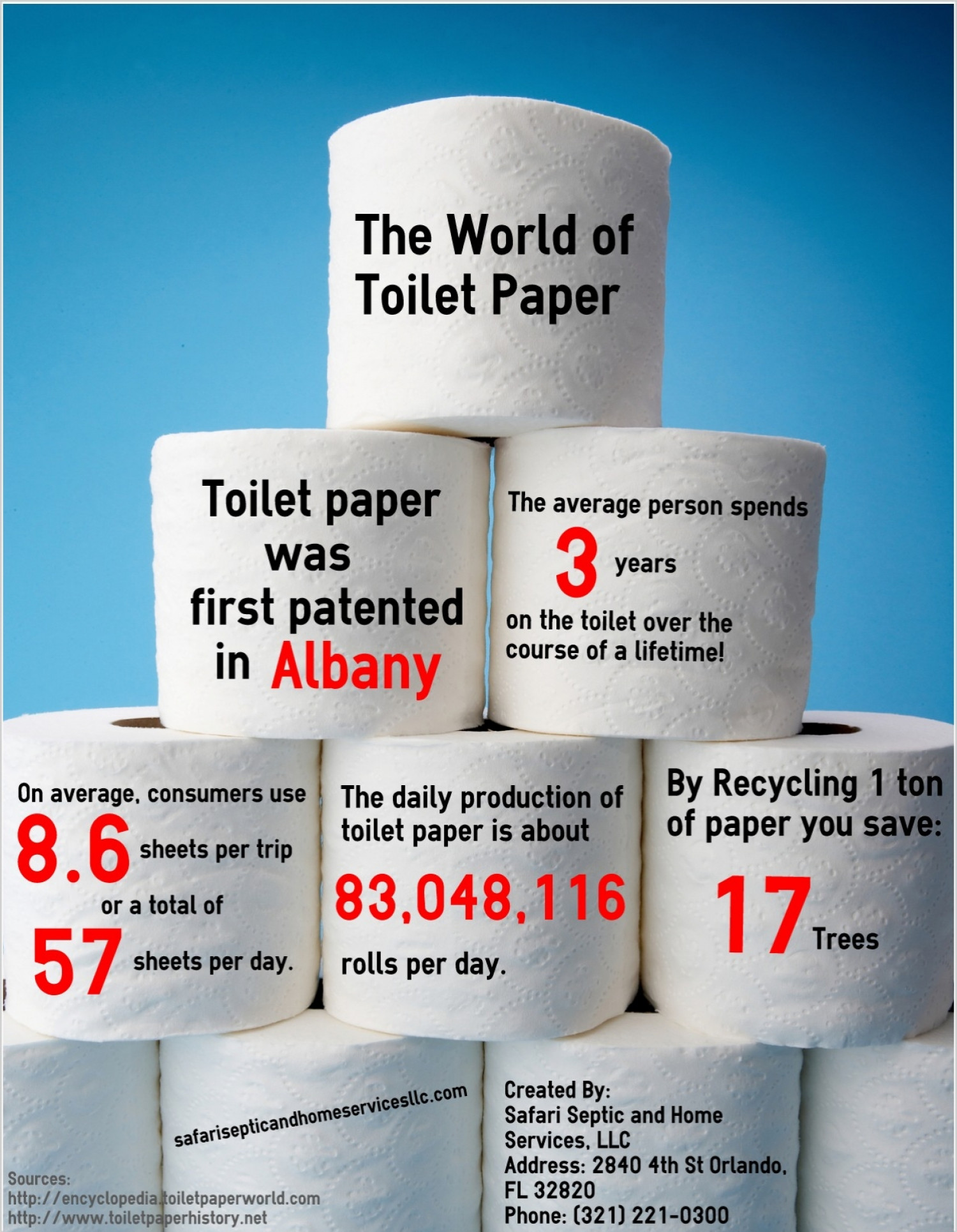 The World of Toilet Paper Infographic
