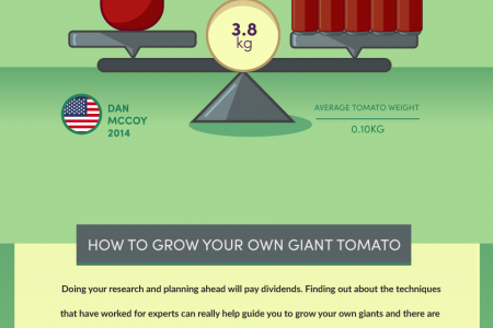 The World's Biggest Vegetables And How To Grow Them Infographic