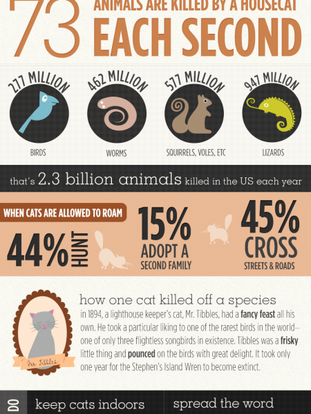 The World's Cutest Killer Infographic