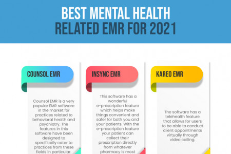 TheraNest Mental Health Software Infographic
