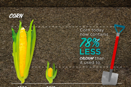 They Don't Make Produce Like They Used To Infographic