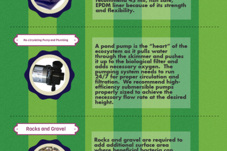 Things Needed when Building Ecosystem Pond Infographic