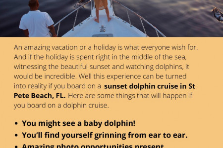 Things That Happen When You Take a Dolphin Cruise Infographic