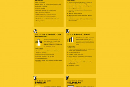 Things to consider while selecting the right ESP Infographic