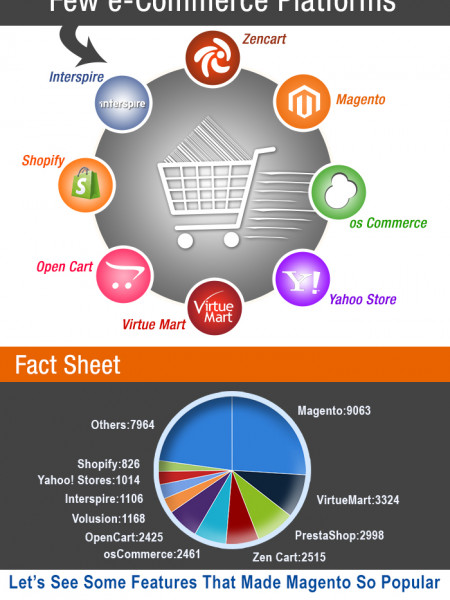 Think e-Commerce Think Magento Infographic