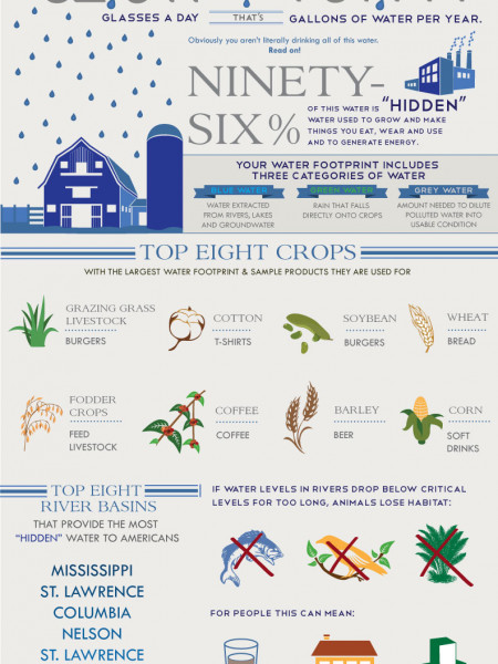 Think You Need 8 Glasses of Water a Day? Infographic