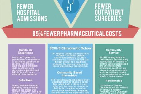 Thinking of Attending Chiropractic School? Infographic