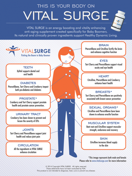This Is Your Body On VITAL SURGE Infographic