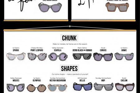 This Season's Sunnies Infographic
