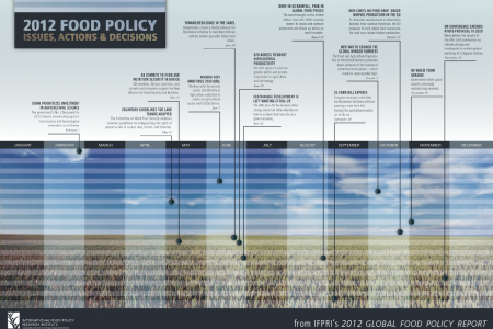 Timeline - 2012 Food Policy Issues, Actions and Decisions Infographic