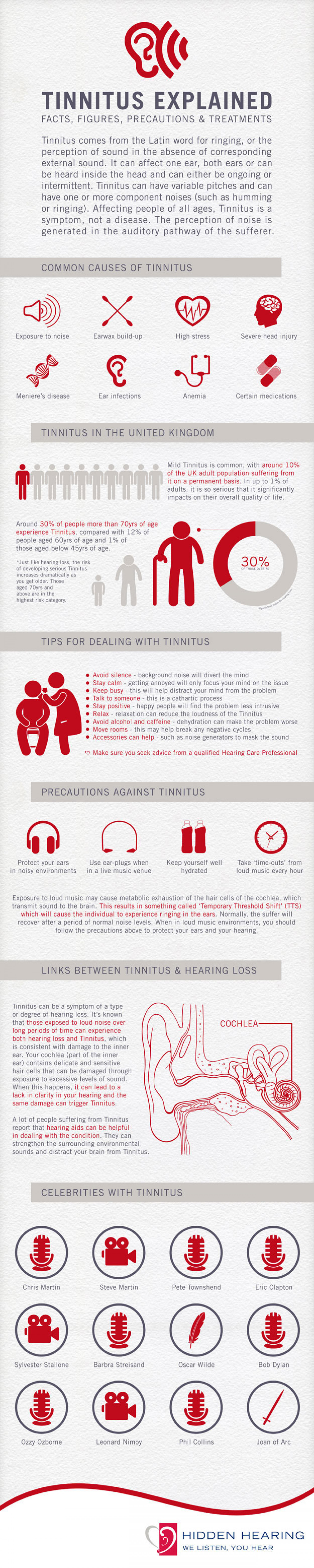 Tinnitus Explained Infographic