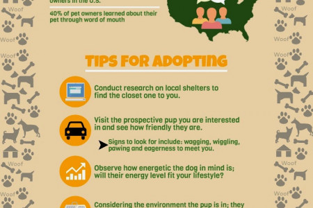 Tip For Adopting a Dog From a Shelter  Infographic