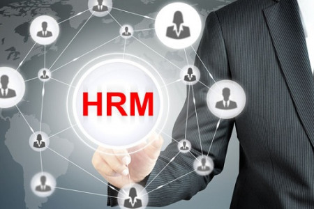 Tips for human resource management success by Wallace and Associates Inc Infographic