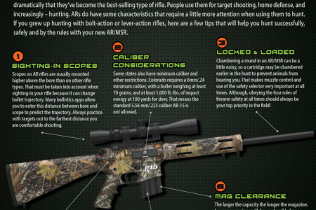Tips for Hunting with an AR/MSR Rifle Infographic
