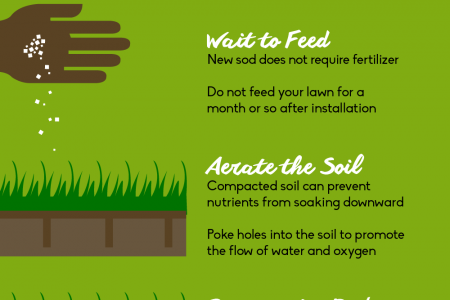 Tips for Maintaining Healthy Sod Infographic