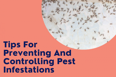 Tips For Preventing And Controlling Pest Infestations Infographic
